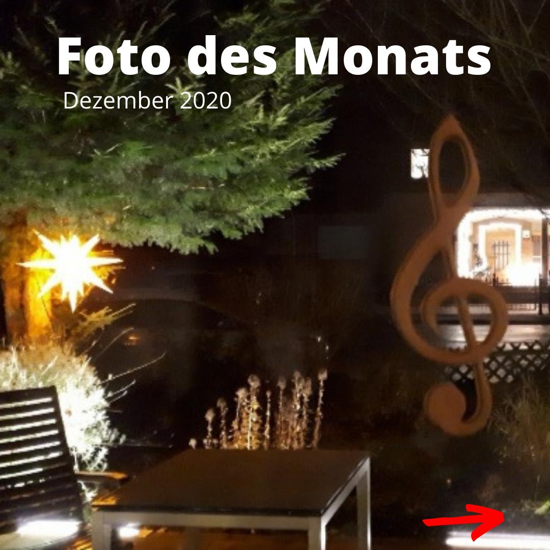 Das Foto des Monats Dezember