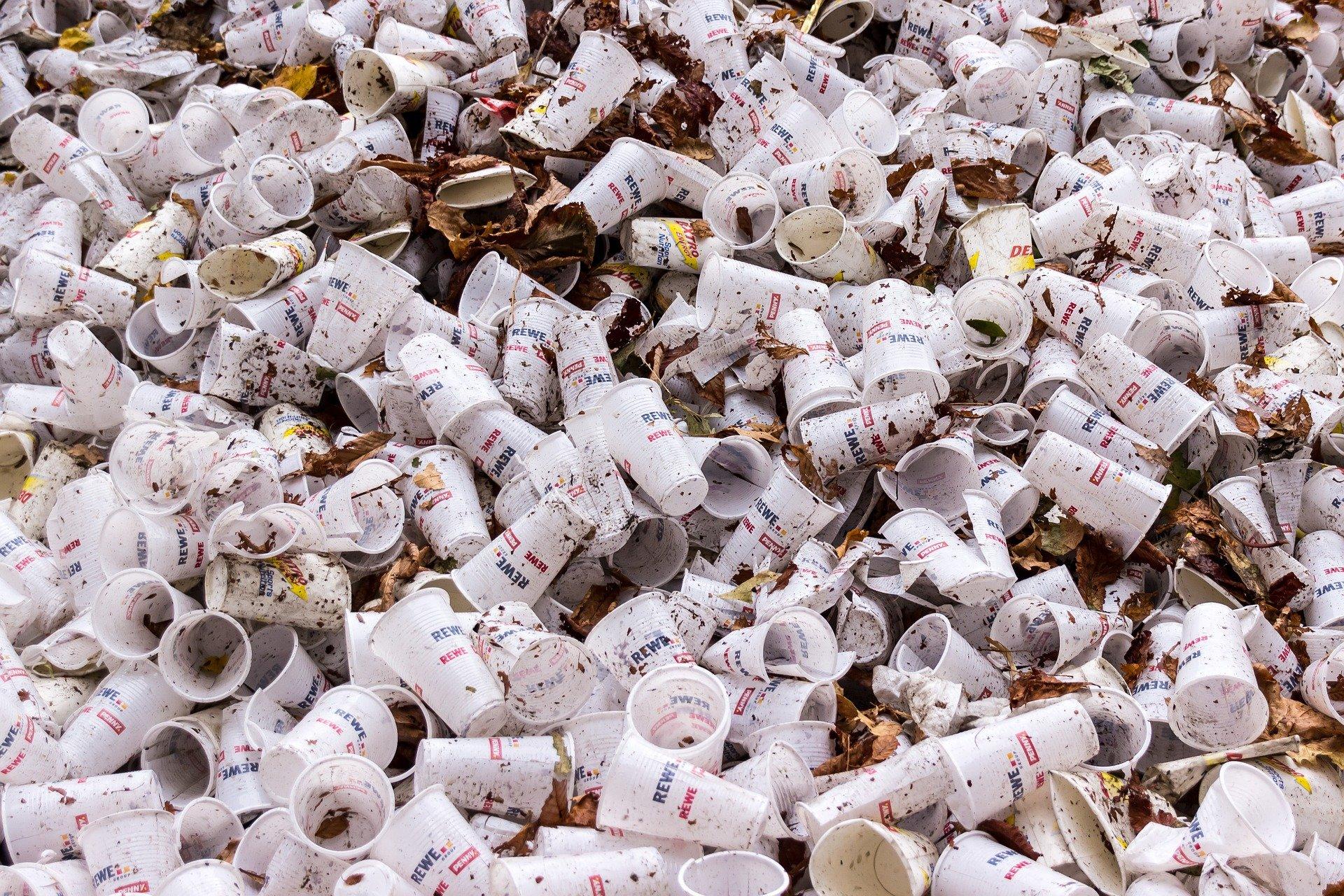 Wie Plastik unsere Umwelt beeinflusst